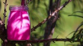 Tarro de cristal en la naturaleza almacen de video