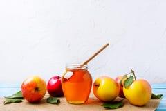 Tarro de la miel con el cazo y manzanas en el fondo blanco Foto de archivo libre de regalías