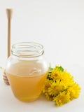 Tarro de la miel y de la flor amarilla del diente de león Imagen de archivo libre de regalías