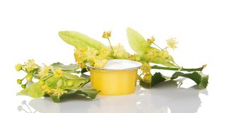 Tarro de la miel y de la rama floreciente del tilo fotos de archivo libres de regalías