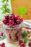 Tarro de las cerezas de la fruta fresca para los productos procesados Foto de archivo libre de regalías