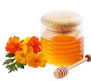 Tarro de miel Foto de archivo libre de regalías