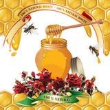 Tarro de miel con el cazo de madera libre illustration