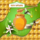 Tarro de miel con el cazo de madera Imagen de archivo libre de regalías