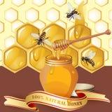 Tarro de miel con el cazo de madera Fotografía de archivo