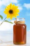 Tarro de miel con los girasoles en el cielo azul Fotos de archivo libres de regalías