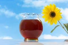 Tarro de miel con los girasoles en el cielo azul Imágenes de archivo libres de regalías