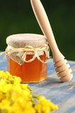 Tarro de miel deliciosa con las flores de la rabina y el cazo de la miel Imagenes de archivo