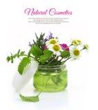 Tarro poner crema cosmético con las hierbas Fotos de archivo