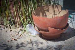 Tarro roto viejo e hierba verde Foto de archivo libre de regalías