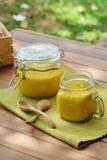 Tarros de sopa de la calabaza en la tabla de madera Foto de archivo libre de regalías