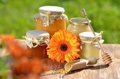 Tarros por completo de polen delicioso de la miel y de la abeja Fotografía de archivo