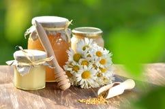 Tarros por completo de polen delicioso de la miel y de la abeja Foto de archivo