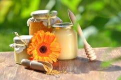 Tarros por completo de polen delicioso de la miel y de la abeja Fotos de archivo