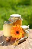 Tarros por completo de polen delicioso de la miel y de la abeja Imagen de archivo libre de regalías