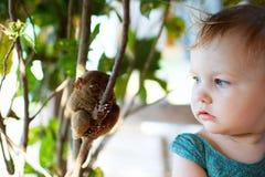 tarsier的女孩 免版税库存图片