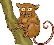 Tarsier animal cartoon illustration. Cartoon Illustration of Funny Tarsier Animal on Tree Branch royalty free illustration