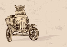 Tarsier Driving An Old Car Stock Photo