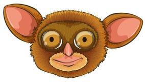 Tarsier head. Illustration of a tarsier head stock illustration