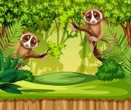 Tarsier living in the jungle. Illustration royalty free illustration