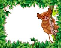 A tarsier in nature frame. Illustration stock illustration