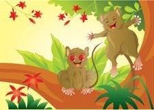 Tarsius Mini Primata Vector Art en de Illustratie Stock Foto's