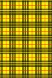 Tartán-amarillo Imágenes de archivo libres de regalías