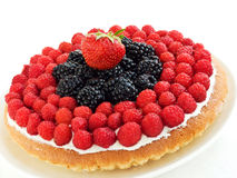 Tart royalty free stock photography
