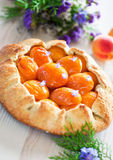Tart with apricots Stock Photo