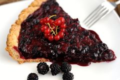 Tart with black currant and blackberry filling. Close up macro Stock Photos