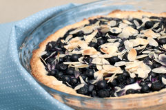 Tart with blueberries and almond Stock Photos