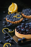 Tart with blueberries Royalty Free Stock Photo