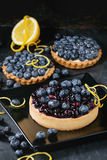Tart with blueberries Stock Photos