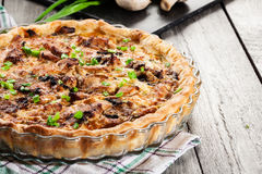 Tart with chicken, mushrooms and cheese Royalty Free Stock Photo