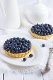 Tart with fresh bluebeeries Royalty Free Stock Photo