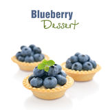 Tart with fresh blueberries Royalty Free Stock Photos