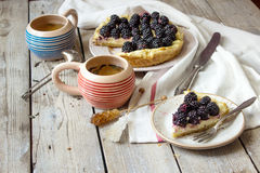 Tart with fresh  blueberries. Stock Image