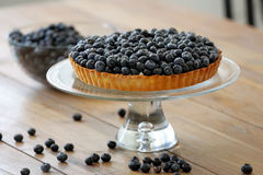 Tart with fresh blueberries on a wooden background.  Royalty Free Stock Photo
