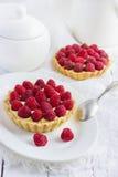 Tart with fresh raspberries Stock Photography