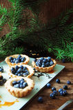 Tart with lemon curd and fresh blueberry, top view. Dessert tart Stock Images
