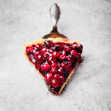 Tart, pie, cake with jellied fresh cranberries, bilberries Stock Photography
