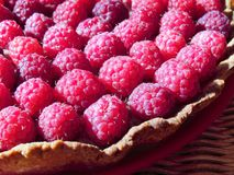 Tart with raspberries and chocolate custard. Open pie  from shortcrust pastry with  raspberries and chocolate custard Royalty Free Stock Photography