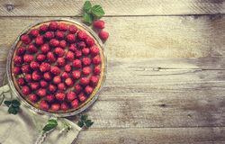 Tart with raspberries Royalty Free Stock Image