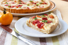 Tart with sheep cheese and tomatoes Royalty Free Stock Image