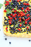 Tart with wild berries Royalty Free Stock Images