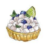 Tarta con crema y el arándano Bosquejo de la comida de la acuarela stock de ilustración