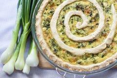 Tarta con queso de cabra y cebollas verdes Imagen de archivo