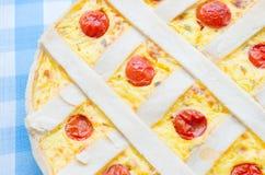 Tarta del queso con los tomates de cereza Imagen de archivo libre de regalías