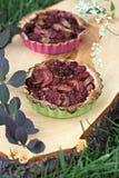 Tarta del ruibarbo y de frambuesa Foto de archivo libre de regalías