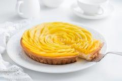 Tarta deliciosa del mango imágenes de archivo libres de regalías